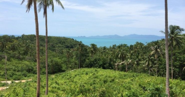 Pristine Sea View Land For Sale In Peaceful Bang Por-2