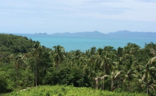 Sea-View Land For Sale In Bang Por