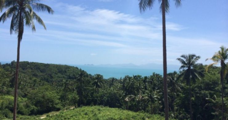 Pristine Sea View Land For Sale In Peaceful Bang Por-3